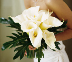 The FTD Calla Lilies Bouquet