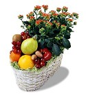 The FTD Fruits and Flowers